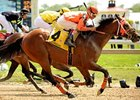 "Starforaday takes the Maryland Sprint to start the stakes fun on Preakness Day at Pimlico.<br><a target=""blank"" href=""http://www.bloodhorse.com/horse-racing/photo-store?ref=http%3A%2F%2Fpictopia.com%2Fperl%2Fgal%3Fprovider_id%3D368%26ptp_photo_id%3D4539742%26ref%3Dstory"">Order This Photo</a>"
