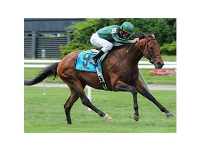 "Gio Ponti powers home in the Man o' War.<br><a target=""blank"" href=""http://www.bloodhorse.com/horse-racing/photo-store?ref=http%3A%2F%2Fpictopia.com%2Fperl%2Fgal%3Fprovider_id%3D368%26ptp_photo_id%3D8319927%26ref%3Dstory"">Order This Photo</a>"