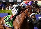 Main Sequence Sews Up Breeders' Cup Turf