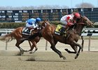"Battier won the Fit to Fight Stakes on April 7.<br><a target=""blank"" href=""http://photos.bloodhorse.com/AtTheRaces-1/at-the-races-2013/27257665_QgCqdh#!i=2613387345&k=hgw2rFT"">Order This Photo</a>"