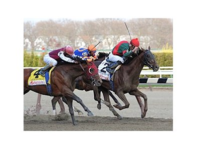 "Toby's Corner makes his first start since winning the 2011 Wood Memorial.<br><a target=""blank"" href=""http://www.bloodhorse.com/horse-racing/photo-store?ref=http%3A%2F%2Fpictopia.com%2Fperl%2Fgal%3Fprovider_id%3D368%26ptp_photo_id%3D9484666%26ref%3Dstory"">Order This Photo</a>"