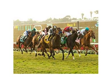 "Favored at 2-1, Whatsthescript wins the Del Mar Mile Handicap (gr. IIT). <br><a target=""blank"" href=""http://www.bloodhorse.com/horse-racing/photo-store?ref=http%3A%2F%2Fpictopia.com%2Fperl%2Fgal%3Fprovider_id%3D368%26ptp_photo_id%3D5655040%0D%0A%26ref%3Dstory"">Order This Photo</a>"
