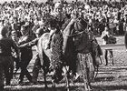 Dust Commander after winning the 1970 Kentucky Derby.