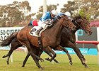 Silentio (inside) gets his head in front of Summer Front at the wire in the Citation.