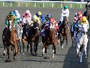 Dullahan wins the 2012 Blue Grass Stakes.