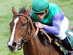 Casablanca Smile wins the 2010 Rood & Riddle Dowager.