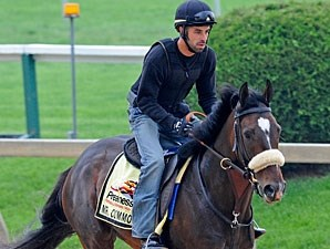 Mr. Commons - Pimlico May 19, 2011