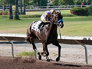 Gladding wins the 2012 Alamedan Handicap.