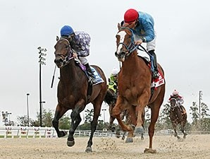 Ide Be Cool wins the 2013 Louisiana Legacy Stakes.