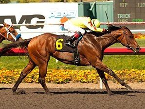 Turbulent Descent Gets Season Started in Win