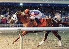 Groupie Doll won the 2012 Presque Isle Downs Masters Stakes.