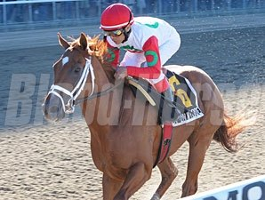 D' Funnybone wins the 2009 Futurity.