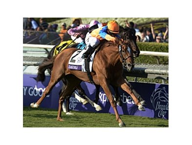 "Zagora fights for the win in the Breeders' Cup Filly & Mare Turf.<br><a target=""blank"" href=""http://photos.bloodhorse.com/BreedersCup/2012-Breeders-Cup/Filly-Mare-Turf/26130199_Qw6hnv#!i=2191367857&k=Z85P857"">Order This Photo</a>"