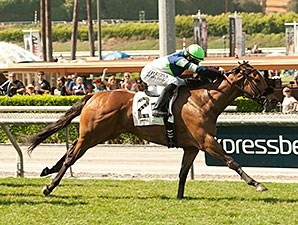 Sheza Smoke Show wins the 2014 Senorita Stakes.
