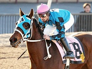 Roses Desert wins the New Mexico State Racing Commission Handicap.