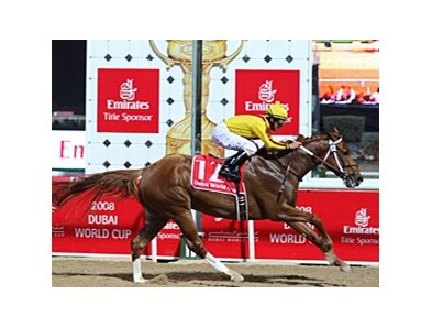 Dubai World Cup winner Curlin could face Einstein in the Stephen Foster.