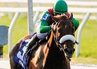 Visionaire drew the outside post in the field of ten for the Gotham (gr. III) at Aqueduct March 8.