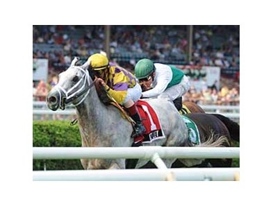 "Wesley wins the National Museum of Racing Hall of Fame Stakes (gr. IIT) at Saratoga Race Course Aug. 4. <br><a target=""blank"" href=""http://www.bloodhorse.com/horse-racing/photo-store?ref=http%3A%2F%2Fpictopia.com%2Fperl%2Fgal%3Fprovider_id%3D368%26ptp_photo_id%3D5396291%0D%0A%26ref%3Dstory"">Order This Photo</a>"
