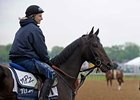 Anak Nakal takes in his surroundings during training hours Tuesday at Churchill Downs.