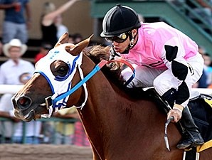 Gossip Dome wins the 2013 Carlos Salazar