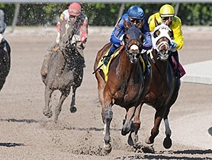 Centrique wins the 2013 Claiming Crown Glass Slipper.