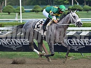Stonetastic wins the 2014 Prioress.
