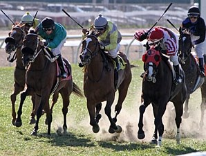 Extravaganza (center, yellow and gray silks) wins the 2013 Happy Ticket.