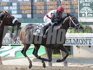 Hour Glass wins the 2010 Vagrancy.