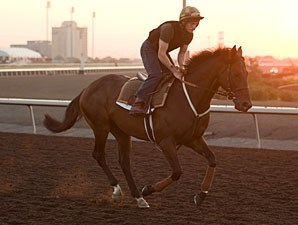 Worthadd - Woodbine, September 13, 2012.