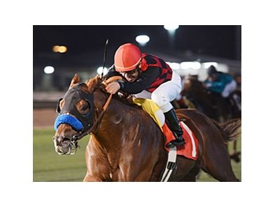 Swift Warrior comes home strong to win the John B. Connally Turf Cup Stakes.