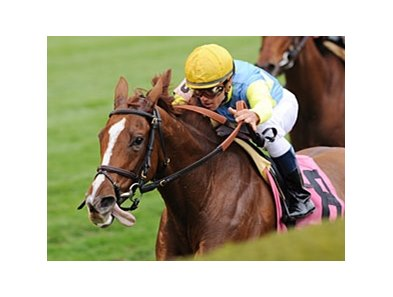 "Dayatthespa leads the way in the Queen Elizabeth II Challenge Cup.<br><a target=""blank"" href=""http://photos.bloodhorse.com/AtTheRaces-1/at-the-races-2012/22274956_jFd5jM#!i=2147313804&k=x888xqv"">Order This Photo</a>"