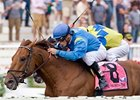 2009 Washington Park Handicap winner Gran Estreno tries for a repeat in 2010.