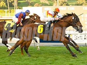 Artiste Royal wins the San Marcos