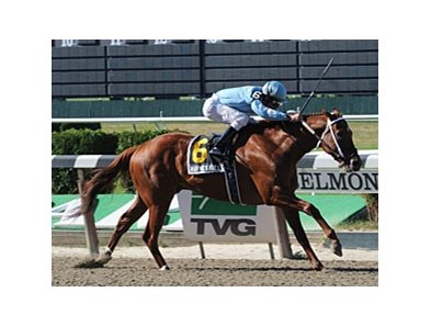 "Haynesfield comes home strong to win the Suburban.<br><a target=""blank"" href=""http://www.bloodhorse.com/horse-racing/photo-store?ref=http%3A%2F%2Fpictopia.com%2Fperl%2Fgal%3Fprovider_id%3D368%26ptp_photo_id%3D9095012%26ref%3Dstory"">Order This Photo</a>"