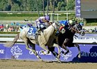 "He's Had Enough (left) finished 2nd behind Shanghai Bobby in the Breeders' Cup Juvenile. <br><a target=""blank"" href=""http://photos.bloodhorse.com/BreedersCup/2012-Breeders-Cup/Juvenile/26130125_Wz4K8f#!i=2194440251&k=22Lw5kH"">Order This Photo</a>"