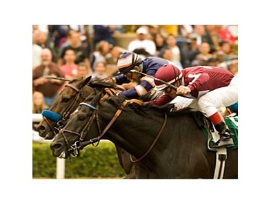 Niagara Causeway, shown winning the 1 1/2-mile Tokyo City Handicap