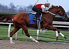 "Curlin may have his first workout of 2008 this weekend at Fair Grounds in New Orleans.<br><a target=""blank"" href=""http://www.bloodhorse.com/horse-racing/photo-store?ref=http%3A%2F%2Fpictopia.com%2Fperl%2Fgal%3Fprovider_id%3D368%26ptp_photo_id%3D1051556%26ref%3Dstory"">Order This Photo</a>"