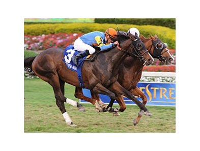Simmard wins the Mac Diarmida Stakes.