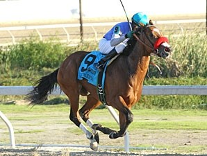 Goldencents wins the 2012 Delta Downs Jackpot.