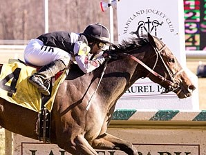 Millionreasonswhy wins the 2012 Wide Country Stakes.