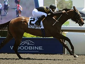 Ward's Madman Diaries Romps to Victoria Win