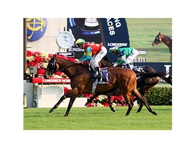 Two-time Hong Kong Horse of the Year Ambitious Dragon
