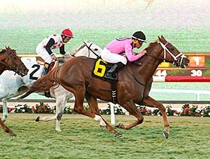 Kaigun wins the 2014 Seabiscuit Handicap.