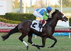 Lentenor Entered to Run Feb. 17 in Florida