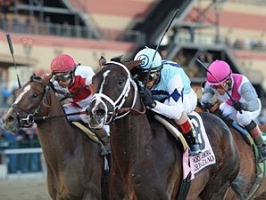 Derby Rematch Looms for Verrazano, 'Invasion'