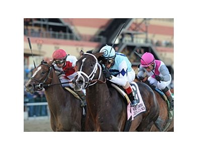 "Normandy Invasion (left) finished 2nd to Verrazano in the Wood Memorial.<br><a target=""blank"" href=""http://photos.bloodhorse.com/AtTheRaces-1/at-the-races-2013/27257665_QgCqdh#!i=2443957153&k=3B96dJp"">Order This Photo</a>"