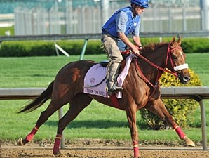 Rose to Gold - Churchill Downs, May 2, 2013.