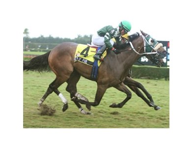 Fly by Phil outfinishes Lost Aptitude to take the Tropical Park Derby.