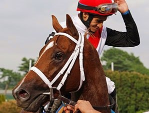 Trappe Shot, 'Uptown' Prepare for Haskell