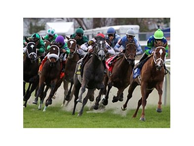 Love to Tell (right) leads the pack in the Bayou Handicap.